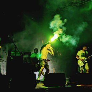 Photo du groupe Lion's Law en live